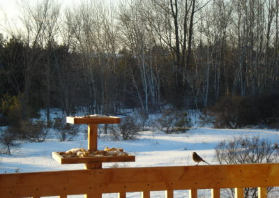 Back deck winter scene